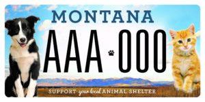 License Plate 2