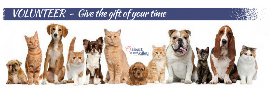 Volunteer – give the gift of your time