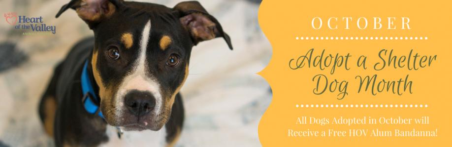 October – Adopt a Shelter Dog Month