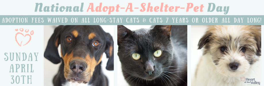 National Adopt-A-Shelter-Pet Day