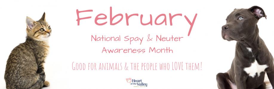 Spay Neuter Awareness Month