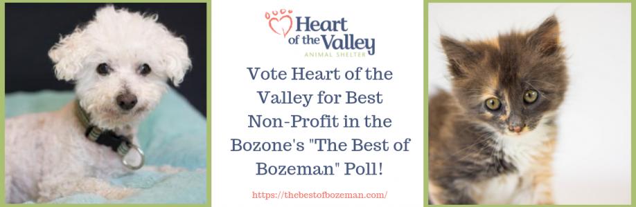 Vote HOV Best Non-Profit
